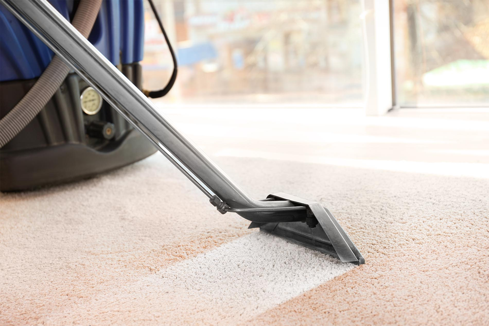 carpet cleaning taupo